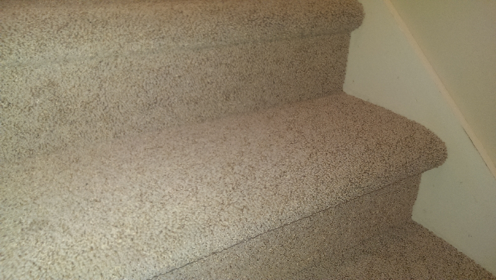 basement high quality carpet is relatively new replaced