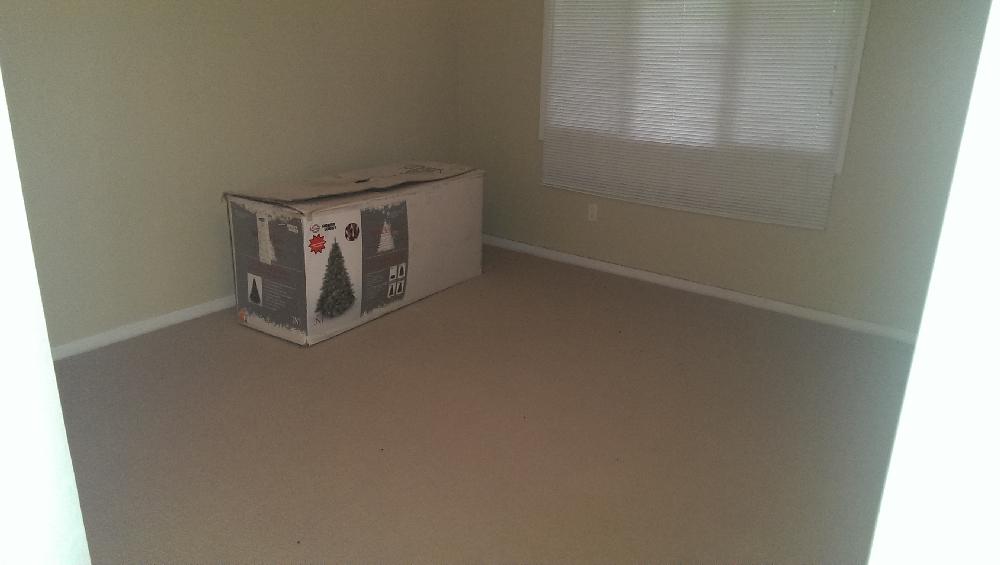 Basement - north basement bedroom