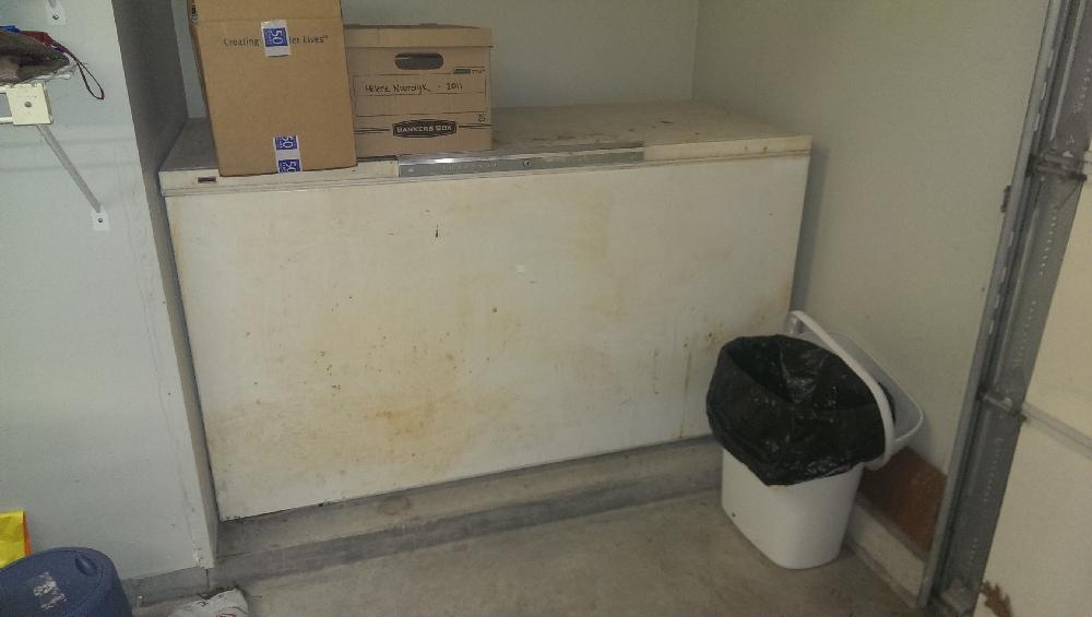 Garage - freezer bay in garage