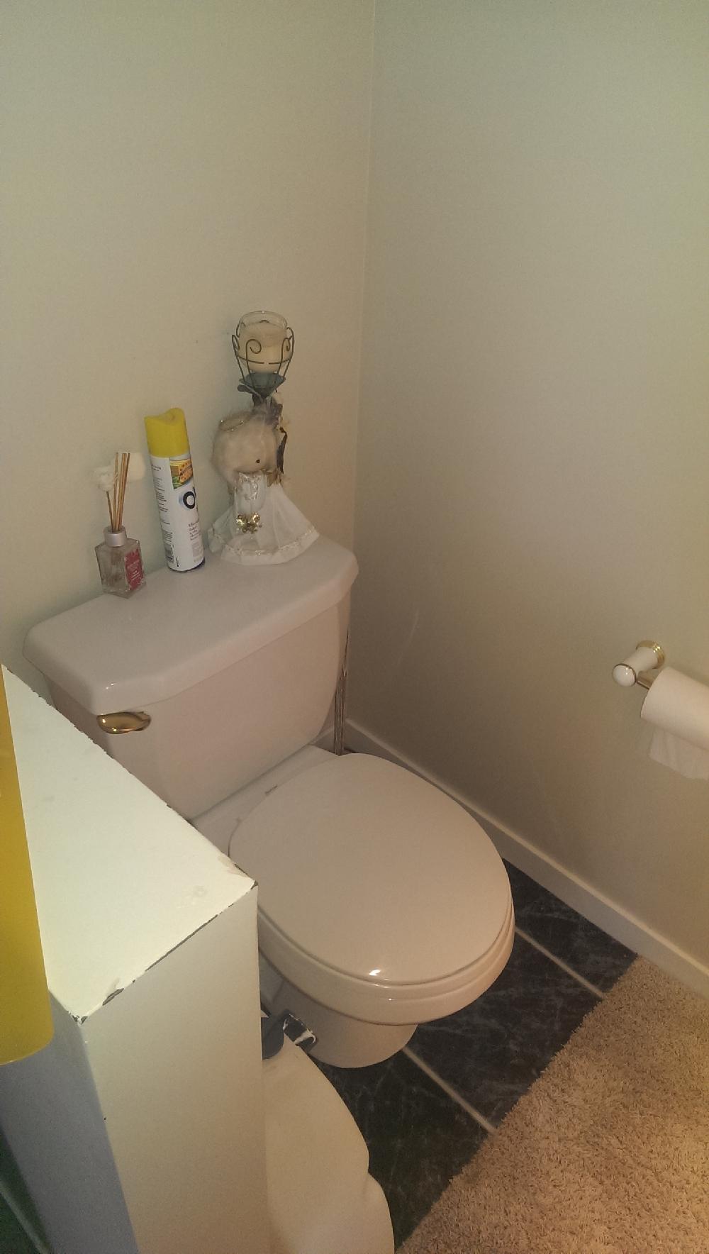 Master - American Standard toilet in master bedroom
