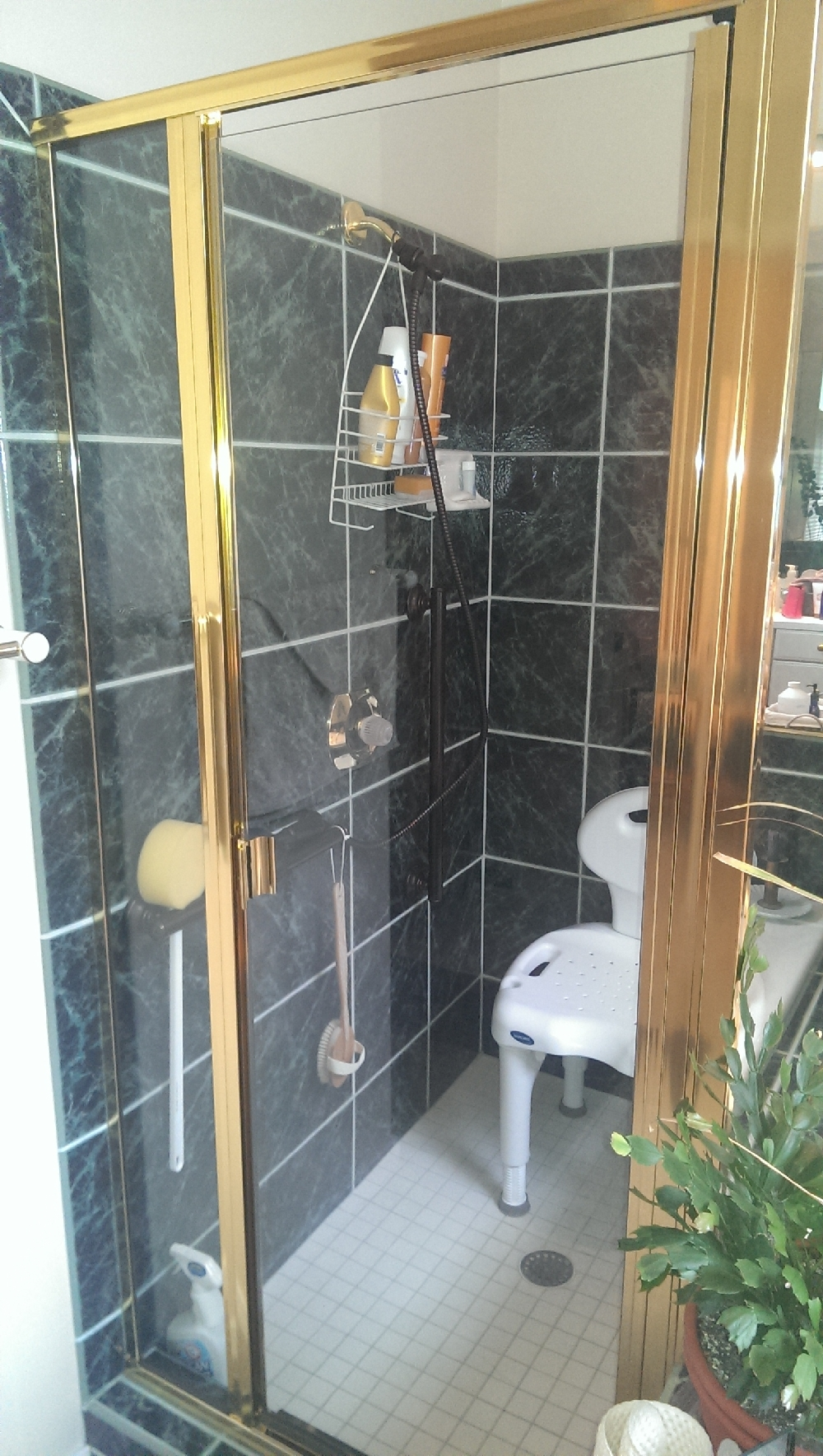 Master - Conveient stand up shower with secure side handles - wand and chair