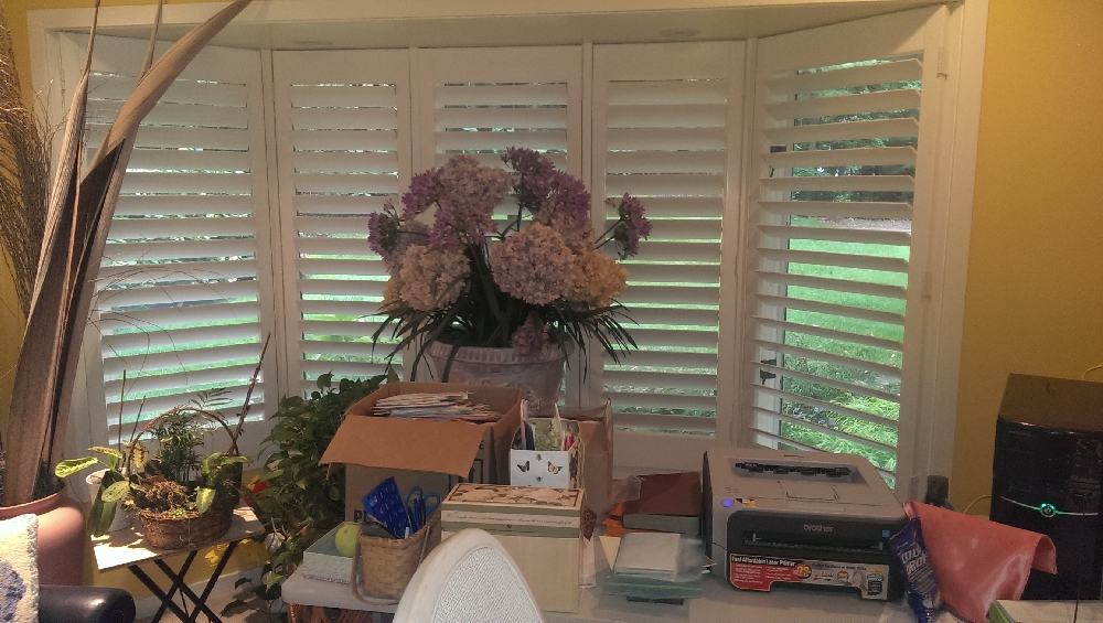 Office - a pleasant bay window in the office where mom did professional counseling in the past