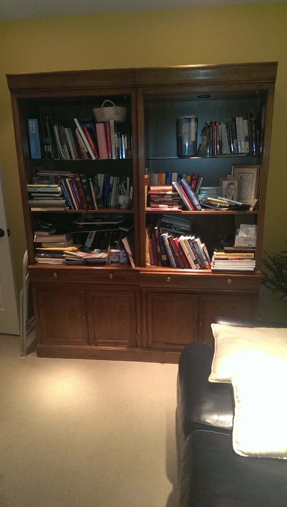 Office - book shelves in office