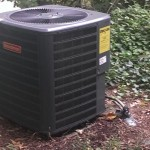 Yard - New Unit in Spring 2013 Central Air Conditioning