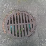Yard - double double drain at bottom of paved driveway just in case