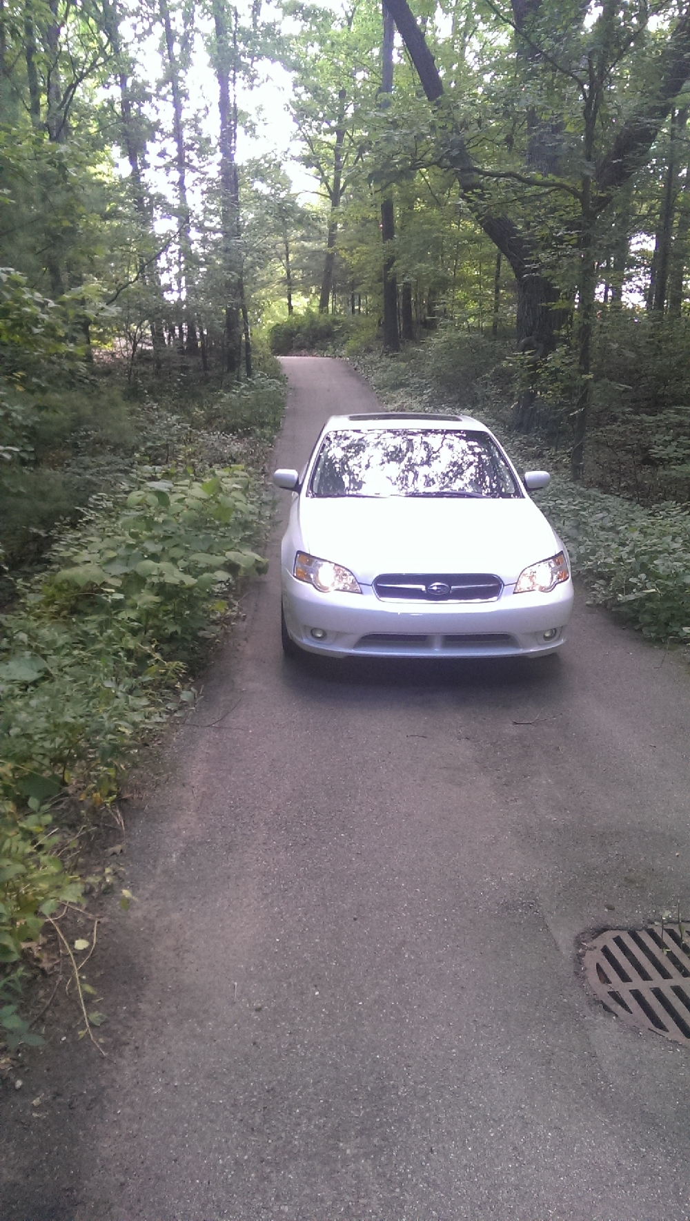 Yard - drain and Easterly view of paved driveway with Subaru