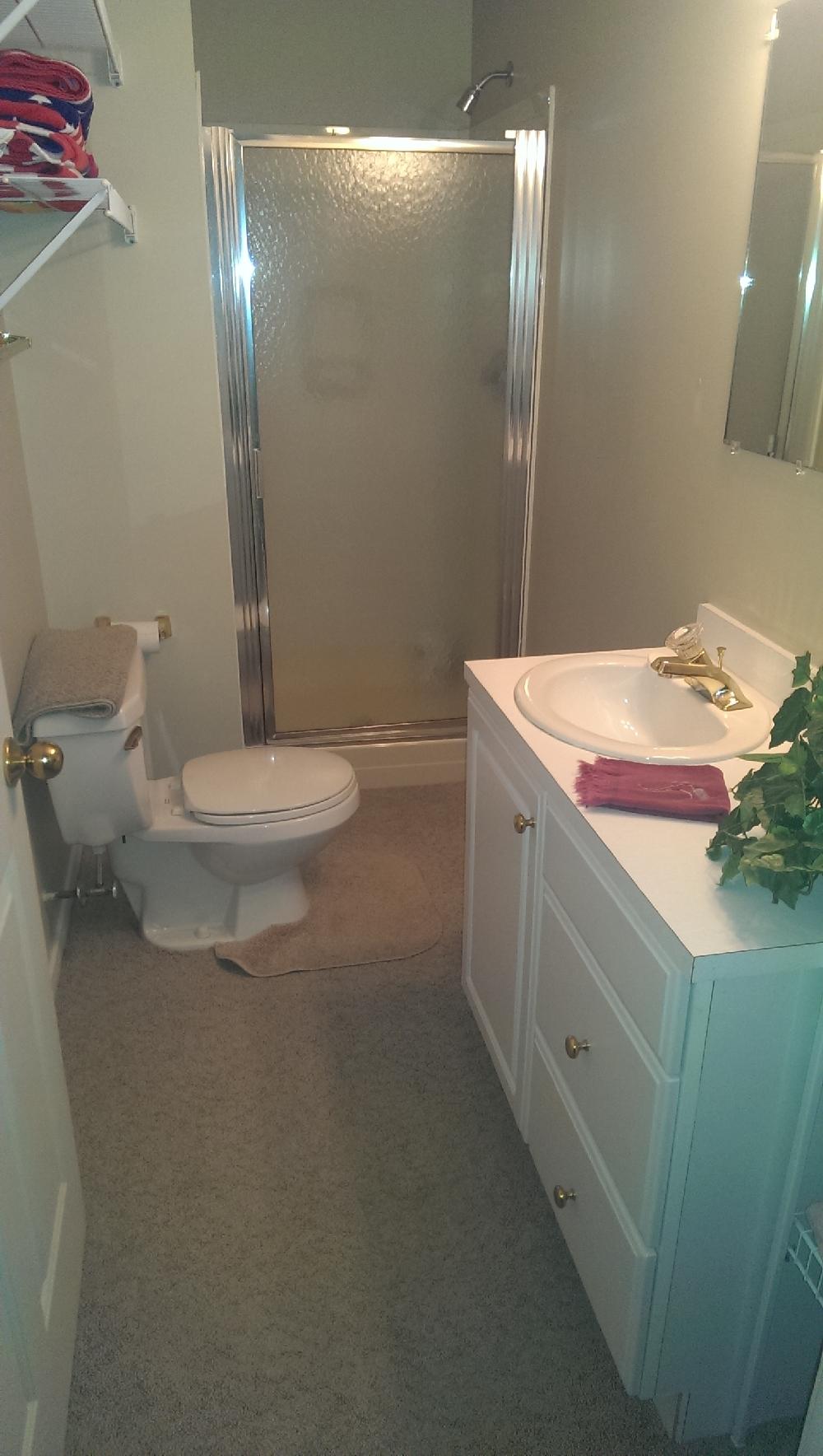 basement - bath and shower for living quarters